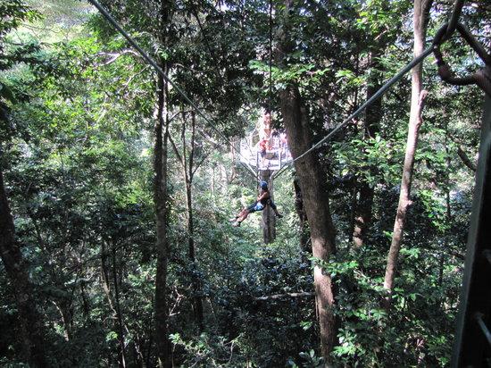 go jungle surfing lot - Đảo Koh Rong thiên đường lý tưởng để nghỉ dưỡng